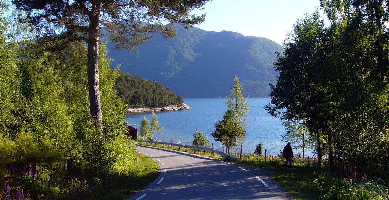 Weg zum Fjord